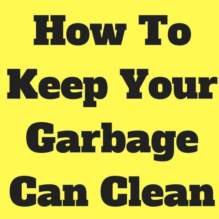 how to clean your garbage can indoors home cleaning tips